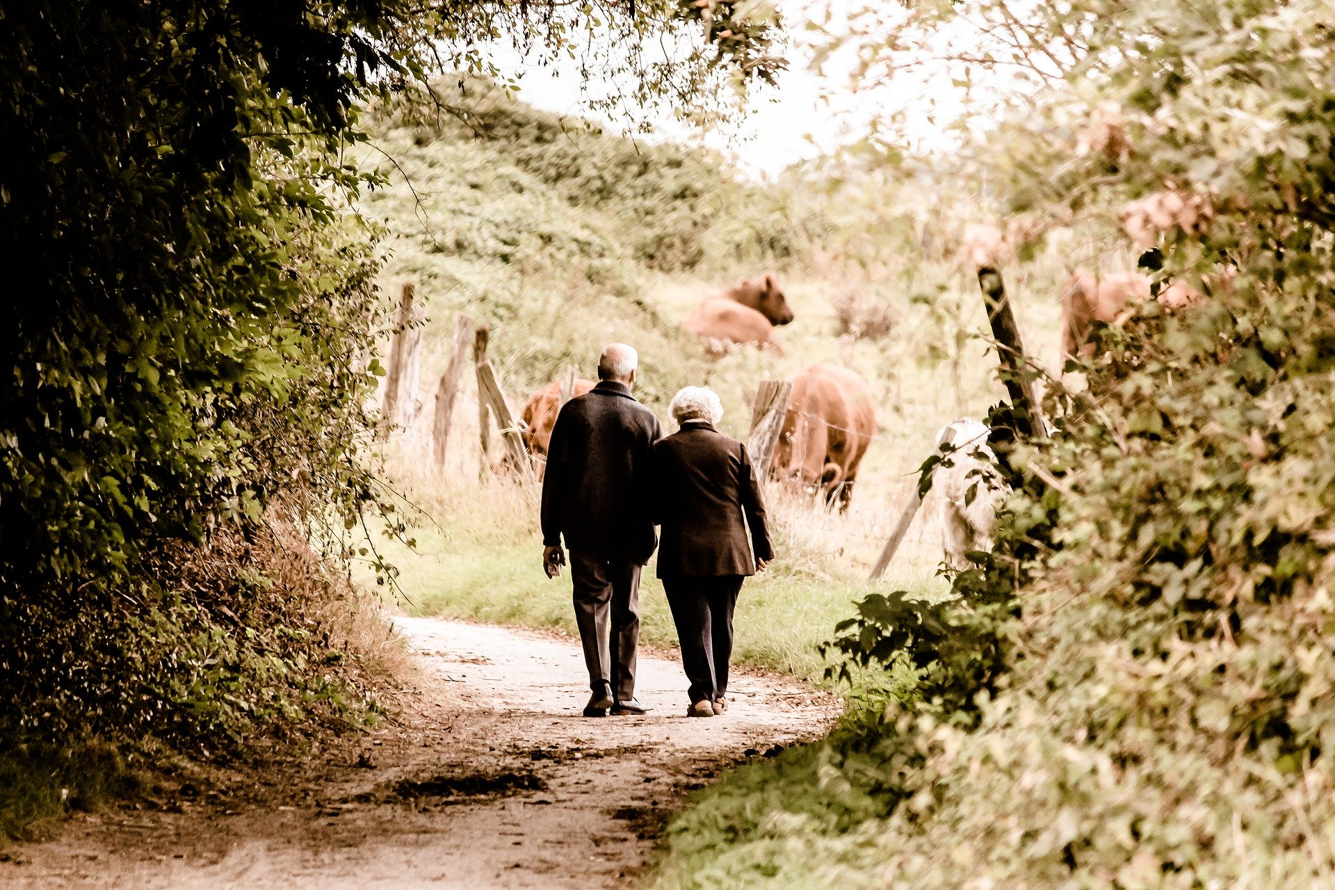 How to Proceed if Your Loved One Didn't Leave a Will
